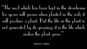 Original Dahlia Pillow Quotes