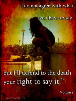 """... ll defend to the death your right to say it."""" Author: Voltaire"""