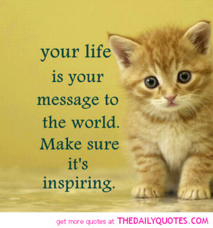 Cats cute and kittens with quotes photo best photo
