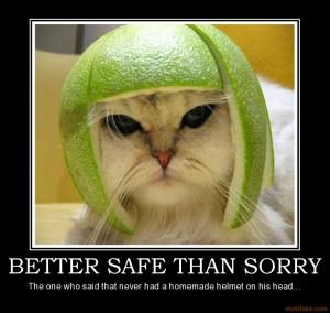 Blog_better-safe-than-sorry-better-safe-than-sorry-cat-helmet ...