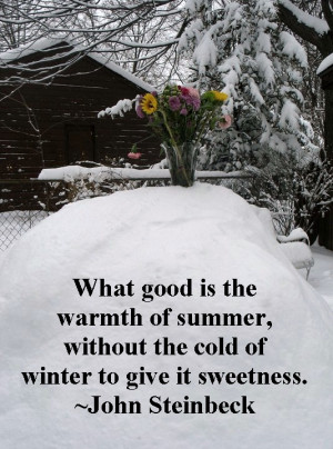 summer in winter quote quotes flowers quotes summer winter
