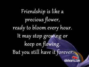 Friendship is like a precious flower, ready to bloom every hour.