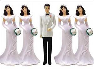 polygamy1(2)