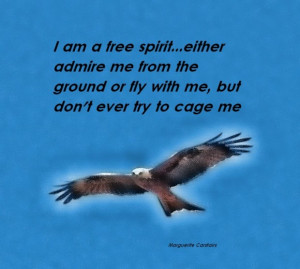 Success quotes admire me from the ground or fly with me quote and the ...