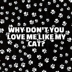 Why Don't You Love Me Like My Cat?