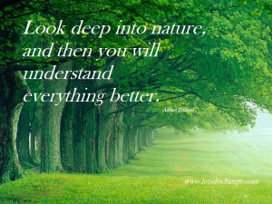 ... Nature, And Then You Will Understand Everything Better - Nature Quote