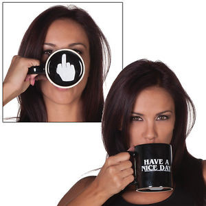... Have A Nice Day Middle Finger Mug - Funny Saying Flip Off Coffee Cup