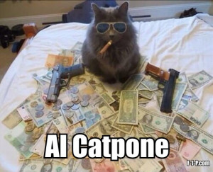 Funny Al Catpone Cat Gangster Meme Joke Picture