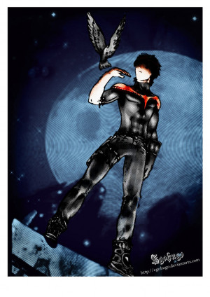 View Full Size | More nightwing pop by egohugo on deviantart |