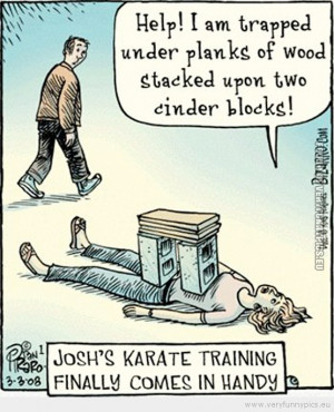 Funny Picture - Karate training finally comes in handy