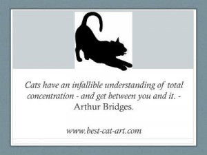 Famous Cat Quotations Graphical Style