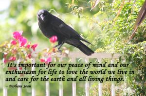 Sayings, Quotes: Barbara Jean