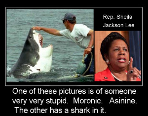Rep. Sheila Jackson Lee wants all Americans to Cower in FEAR