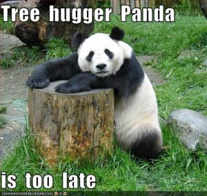 funny-pictures-tree-hugger-pandag.jpg