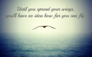 Wing Quotes