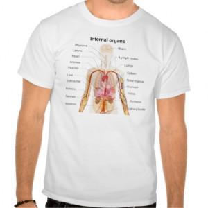 Major Internal Organs in the Human Body Chart Shirt