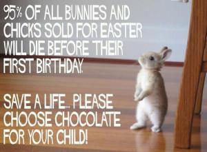 An Easter PSA: Save the Bunnies!