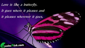 Love Is Like A Butterfly by unknown Picture Quotes