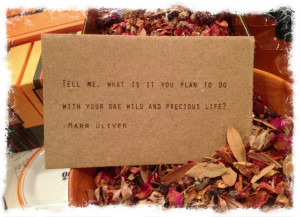 ... it you plan to do with your one wild and precious life? –Mary Oliver