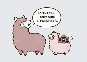These alpaca jokes are really getting me!!