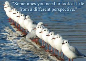 Sometimes You Need To Look At Life From A Different Perspective