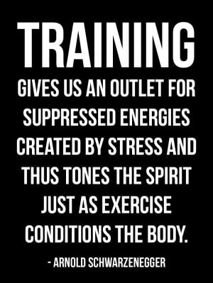 Motivational Bodybuilding Quote from Arnold Schwarzenegger Numero 9: