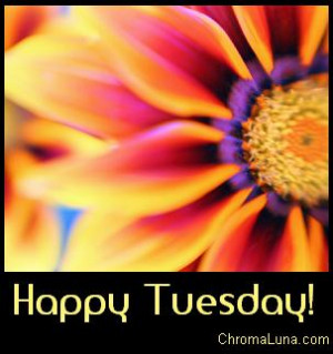 happy-tuesday-graphic-for-facebook-share.jpg#happy%20tuesday%20303x323
