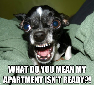 Tips to Help You Find the Madison Apartment that's Right for You!
