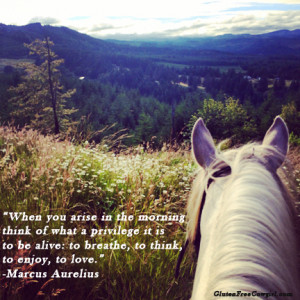 Cowgirl quotes and love to inspire your life! Enjoy! SarahAnn