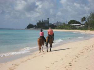 Hilton Barbados Resort Riding at Malibu Beach arranged by the Hilton
