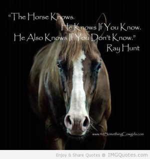 Meaningful Horse Quotes (6)