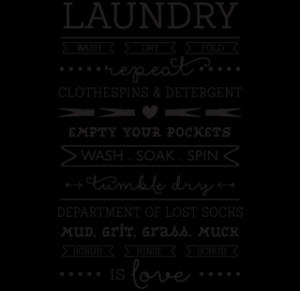 Laundry is Love Wall Quotes™ Decal