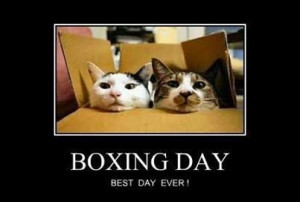 Boxing Day.....Christmas for Cats.....Best Day Ever!!!!!