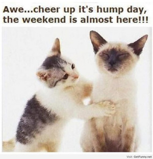 Weekend is almost here! - Funny Pictures, Funny Quotes, Funny Memes ...