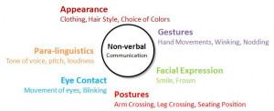 importance of nonverbal communication pdf