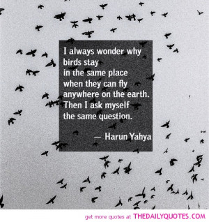 ... birds-stay-harun-yahya-motivational-inspirational-quotes-sayings