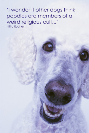 Pet Memorial Sayings Quotes http://www.signscene.co.za/pet_quotes_dogs ...