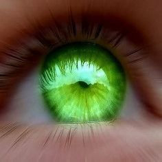 quotes about green eyed people | Green-Eyes-pic-people-with-green-eyes ...