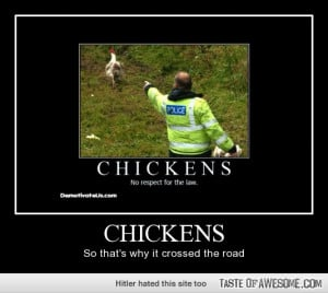 Description : funny chickens pics,funny boondock saints quotes,funny ...