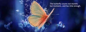 Butterfly_quote_fb_cover