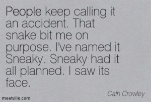 SNEAKY PEOPLE QUOTES | ... . Sneaky had it all planned. I saw its face ...