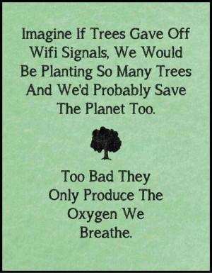 Trees plant them!