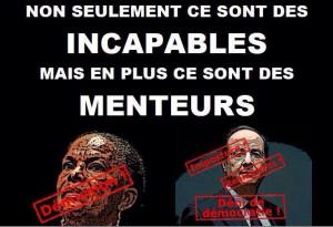 Les 100M€ promis par François Hollande aux chercheurs français n ...
