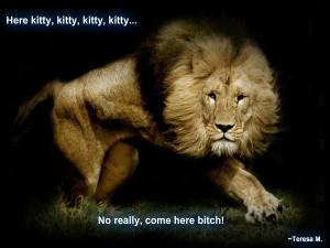 Funny Lion