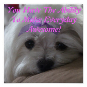 Dog Sayings Posters & Prints