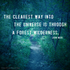 ... into the universe is through a forest wilderness quote by John Muir