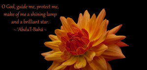 God, guide me, protect me, make of me a shining lamp and a brilliant ...