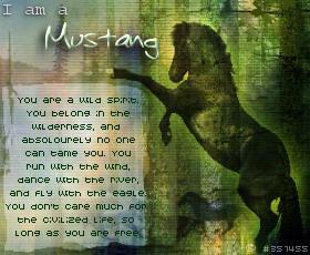 Spirit Horse Movie Quotes