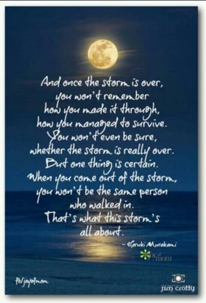 ... same person after the Storm - which is what that storm is all about