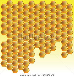Related Pictures honey bee honey bee illustration